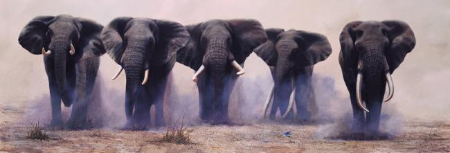 The Wild Bunch by Jonathan Truss