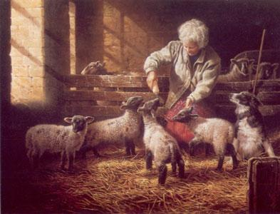 The Orphans - Border Collie & Lambs by Michael Jackson