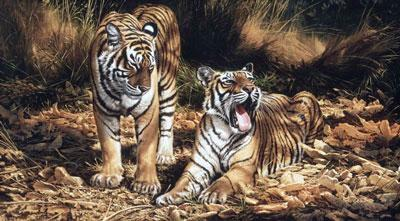 Son & Heir (On Canvas) - Tigers by Michael Jackson