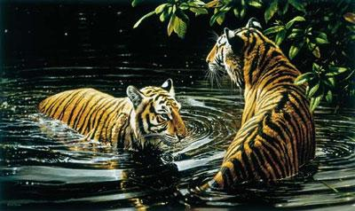 Tiger - Bengali Bathers (Canvas) by Michael Jackson