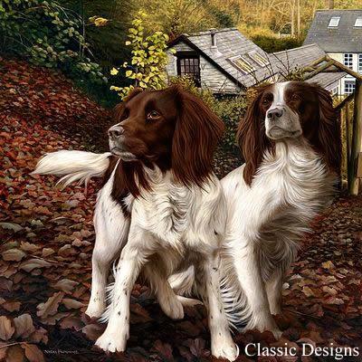 Autumn Watch - Box Canvas by Nigel Hemming