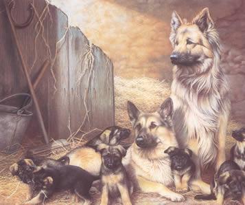 Shepherds Flock by Nigel Hemming