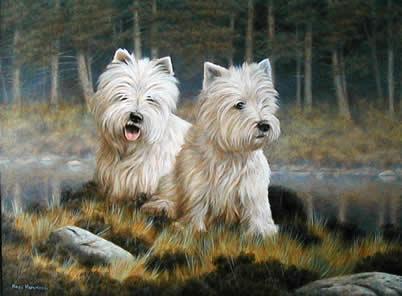 Westies In The Undergrowth by Nigel Hemming