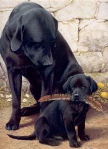 Like Father Like Son by Nigel Hemming