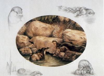 Otter Family by Nigel Hemming