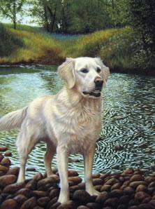 White Gold by Nigel Hemming