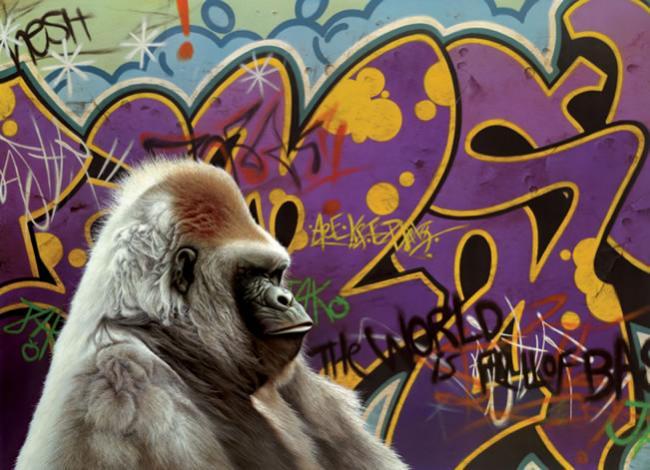 Urban Gorilla - Framed