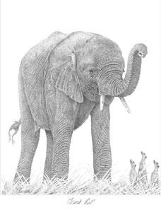 Trunk Call by Peter Hildick