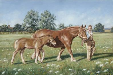 Suffolk Fillies - Unstretched Canvas by Steven Binks