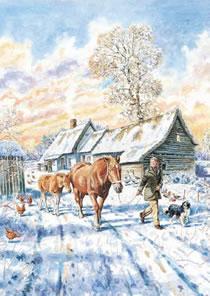 The Winter Foal, Scotts Farm, Pebmarsh