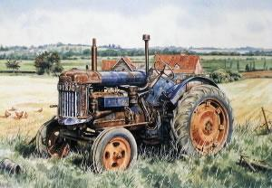 Fordson Major E27N At Grove Farm by Steven Binks