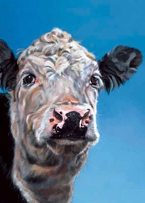 Latte - Cow