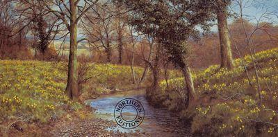 Daffodil Brook