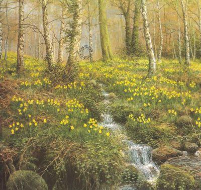 Daffodil Wood by William Makinson