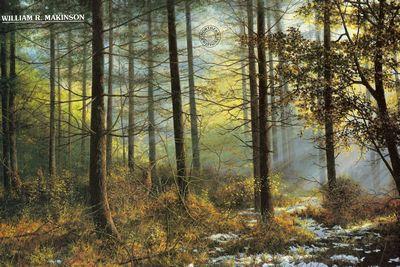 Winter Sunlight by William Makinson